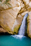 Cascade à écriture ligne par ligne d'oasis Photo libre de droits