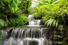 Cascade à écriture ligne par ligne dans la forêt tropicale Photo stock
