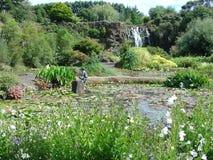 Cascade à écriture ligne par ligne dans le jardin de l'eau Image libre de droits
