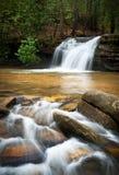 Cascade à écriture ligne par ligne de détente de montagne avec de l'eau soyeux Photo stock