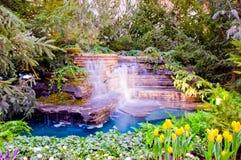 Cascade à écriture ligne par ligne de jardin botanique Photos libres de droits