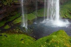 Cascade à écriture ligne par ligne de Seljalandsfoss, Islande Image stock