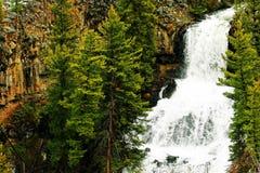 Cascade à écriture ligne par ligne de Yellowstone Photo libre de droits