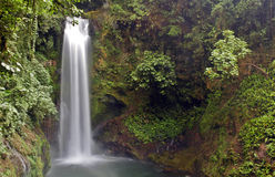 Cascade à écriture ligne par ligne du Costa Rica Image libre de droits