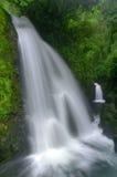 Cascade à écriture ligne par ligne du Costa Rica Image stock