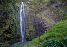 Cascade à écriture ligne par ligne Hawaï Image libre de droits