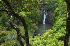Cascade d'île Photos libres de droits