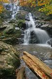 Cascade d'automne Image stock