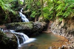 Cascade d'Onomea, jardin botanique tropical hawaïen, Hili, Hawaï Entouré par la forêt, la piscine et les roches tropicales ci-des photos libres de droits