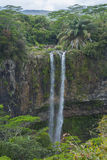 Cascade d'une falaise dans la forêt tropicale Image libre de droits