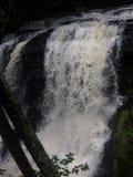 Cascade dans Child& x27 ; parc Pennsylvanie de s Image stock