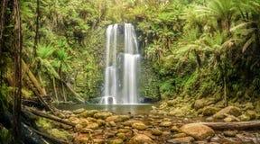 Cascade dans l'Otways, Australie Photographie stock libre de droits