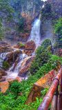 Cascade dans la forêt photos stock