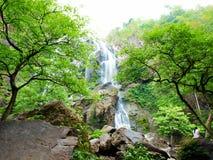Cascade dans la forêt Images stock