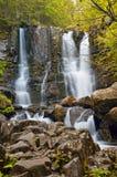 Cascade dans la forêt Photographie stock libre de droits
