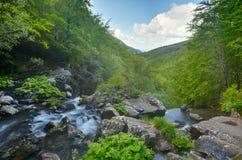 Cascade dans la forêt Photos libres de droits