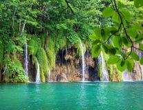 Cascade dans la forêt Images libres de droits