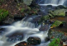 Cascade dans la forêt d'automne Image libre de droits