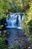 Cascade dans la forêt d'automne Images stock