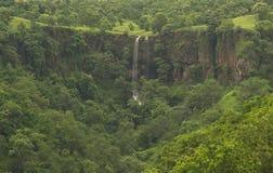 Cascade dans la forêt indienne verte Photo stock