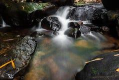 Cascade dans la forêt profonde Image libre de droits