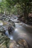 Cascade dans la forêt tropicale de la Malaisie Photo libre de droits