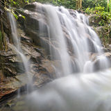 Cascade dans la forêt tropicale de la Malaisie Photos stock