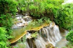 Cascade dans la forêt tropicale de parc national, Thaïlande Photo libre de droits