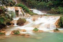 Cascade dans la forêt tropicale sounthern photos libres de droits