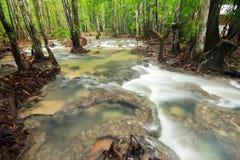 Cascade dans la forêt tropicale sounthern image stock