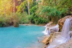 Cascade dans la forêt tropicale (Tat Kuang Si Waterfalls à l'éloge de Luang Photos libres de droits