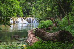 Cascade dans la forêt tropicale, Thaïlande Photo stock