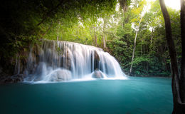 Cascade dans la jungle Images libres de droits