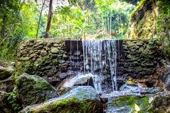 Cascade dans la jungle vert-foncé La Thaïlande Images libres de droits