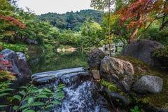Cascade dans la pagoda japonaise de jardin image stock
