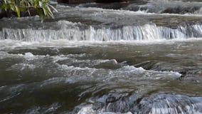 Cascade dans la saison des pluies banque de vidéos