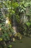 Cascade dans la terre tropicale photo stock