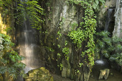 Cascade dans la terre tropicale photos stock