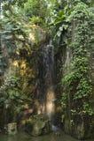 Cascade dans la terre tropicale photo libre de droits