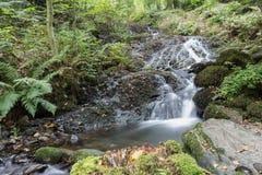 Cascade dans le secteur de lac Photos stock