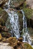 Cascade dans les montagnes carpathiennes Images libres de droits