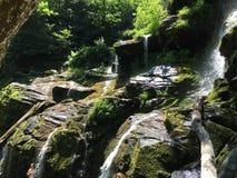 Cascade dans moussu vert clair Photos libres de droits