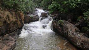 Cascade dans Nakornnayok, Thaïlande clips vidéos