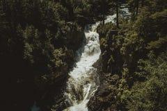 Cascade dans Rawdon image libre de droits