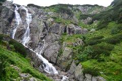 Cascade dans Tatras Images stock