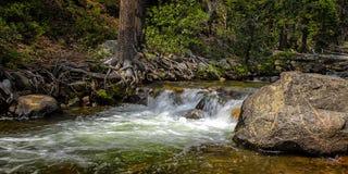 Cascade dans une crique avec des arbres et des roches III photos libres de droits