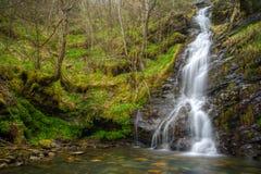 Cascade dans une falaise par la forêt Photo libre de droits
