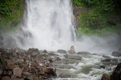 Cascade de Bali, cascade de Sekumpul, Bali Photos stock
