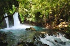Cascade de Banias Photos libres de droits