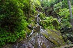 Cascade de bord de la route dans Great Smoky Mountains Image stock